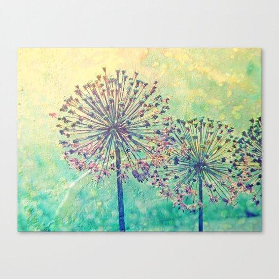 Feuerwerk Canvas Print