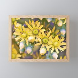 Ants on Tiny Yellow Flowers by Reay of Light Photography Framed Mini Art Print