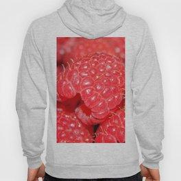 Red Raspberries Freshly Picked Hoody