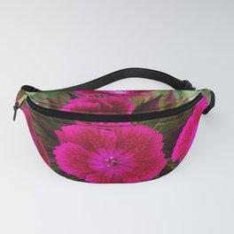 Blossoming garden carnation, magenta color Fanny Pack