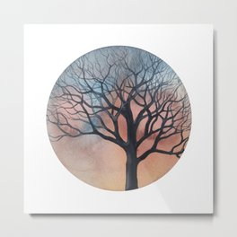 Tree on a beautiful January afternoon Metal Print