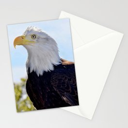 Profile of an American Bald Eagle Stationery Cards