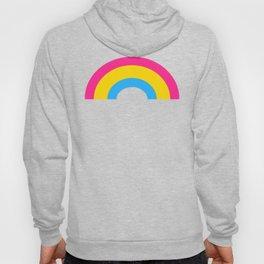 Pansexual Rainbow Hoody