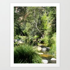 West Fork Art Print