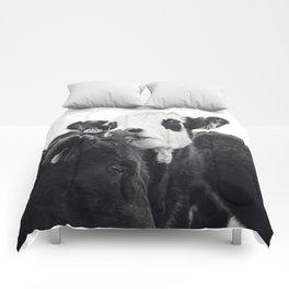 Kissing Cows Print Comforters