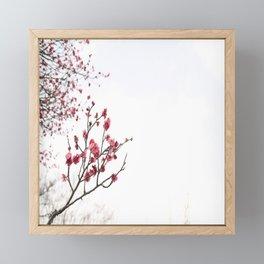 Blossom Framed Mini Art Print
