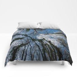 Loamhole Dingle Treetops Comforters