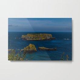 Antrim Coast Northern Ireland, UK Metal Print