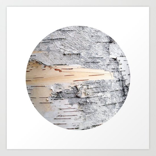 Planetary Bodies - Birch Art Print