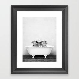 Three Little Pigs in a Vintage Bathtub (bw) Framed Art Print