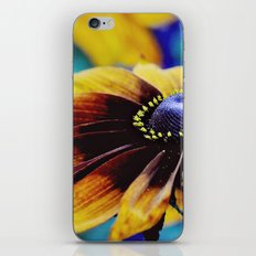 PROMO!!! Free Shipping on all products...expires August 12, 2012 at midnight Pacific Time. iPhone & iPod Skin