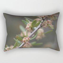 Closeup Mountain Laurel in Utah Rectangular Pillow