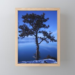 Pine Tree silhouette on Blue Framed Mini Art Print