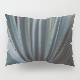 Soothing Succulent Pillow Sham