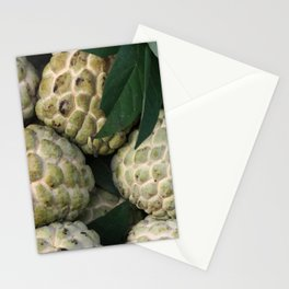 Cherimoya - cinnamon apple - Noi Na Fruits Stationery Cards