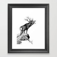 Stag Roaring in the Rut Framed Art Print