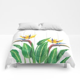 Birds of paradise flowers Comforters