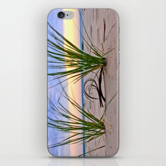 Curly Driftwood iPhone & iPod Skin