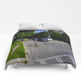 We Brake For Geese (Birds of Chicago Collection) Comforters