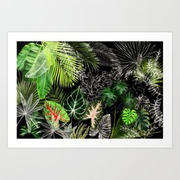 Tropical Foliage 04 Night Garden Art Print