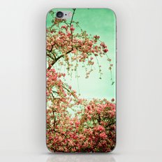 Flowers Touch the Sky iPhone & iPod Skin