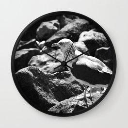 Seagull on Rocks Wall Clock