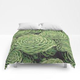 Succulents   Garden Plants Comforters