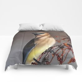Cedar Waxwing Pose Comforters