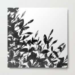 Foliage Series no1 white Metal Print