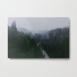 Bavarian Fog Metal Print