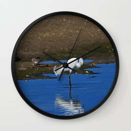 Snowy Egret at Ding Wall Clock
