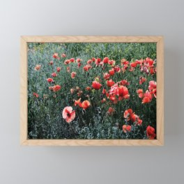 Poppies In A Field Framed Mini Art Print