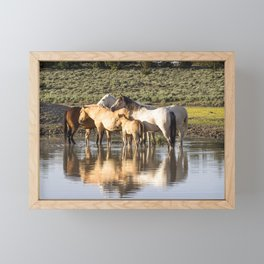 Reflection of a Mustang Family Framed Mini Art Print