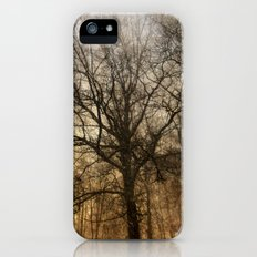 trees in a storm iPhone (5, 5s) Slim Case