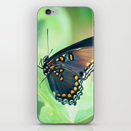 Color by Numbers iPhone & iPod Skin