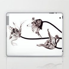 SKULL  X-RAY Laptop & iPad Skin