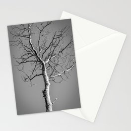 Bare Tree in the sky Stationery Cards