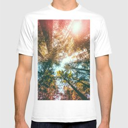 California Redwoods Sun-rays and Sky T-shirt