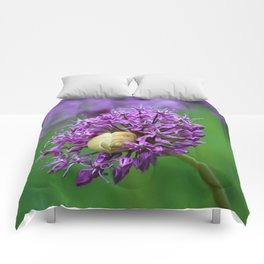 Allium Flower Comforters
