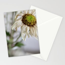 Dead things are beautiful too (3) Stationery Cards