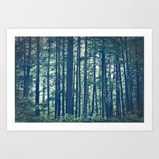 See the Forest for the Trees Art Print