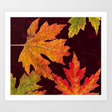 Leaves of Red Gold and Orange a Breath of Fall Art Print