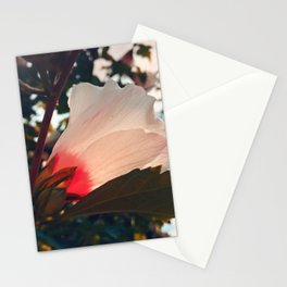loving you Stationery Cards