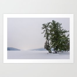 Beautiful Winter Art Print