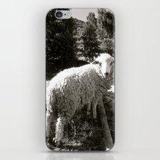 Baaahhh iPhone & iPod Skin