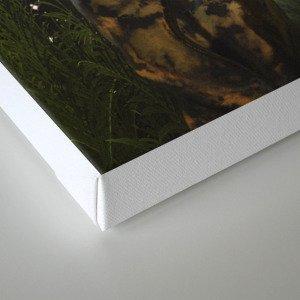 SOULMATES ∀ Canvas Print
