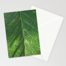 Botanical Gardens Leaf #101 Stationery Cards