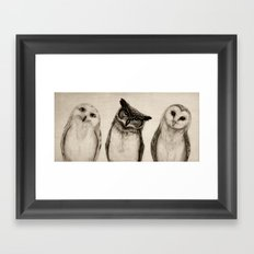 The Owl's 3 Framed Art Print