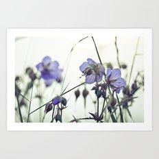 Sunlit meadow Crane's-bill Art Print