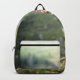 Greenland Goat on mossy hills Backpack